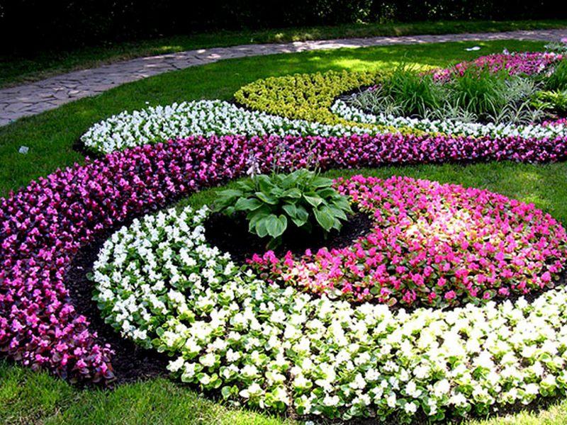 Цветы на клумбе своими руками